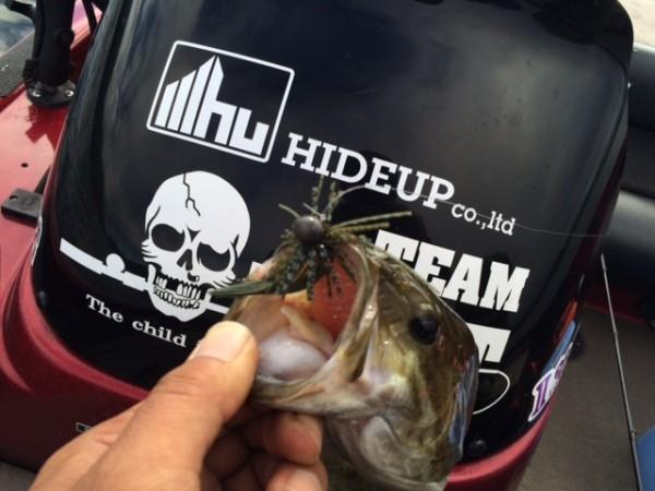hideup ボンバー ブログ写真 2015/09/20
