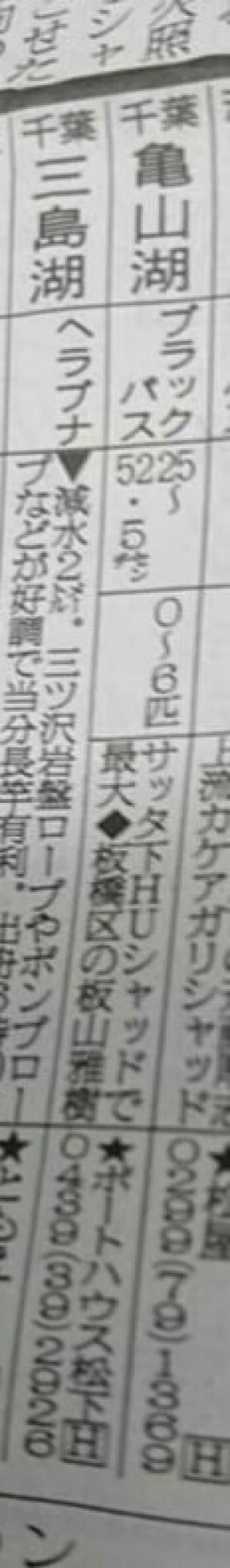 hideup 板山雅樹  ブログ写真 2017/02/02