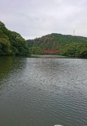 hideup 板山雅樹  ブログ写真 2019/10/15