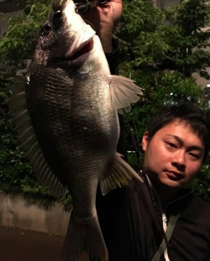 hideup 久次米良信 ブログ写真 2016/06/17