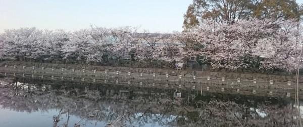 hideup 久次米良信 ブログ写真 2017/04/14