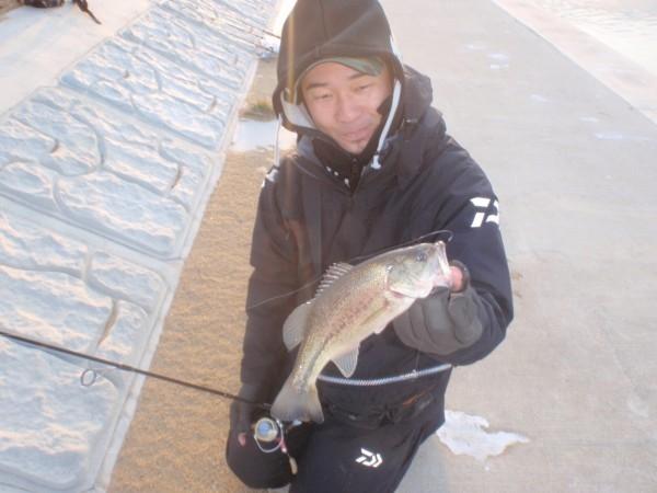 hideup 美濃島健二 ブログ写真 2014/01/31