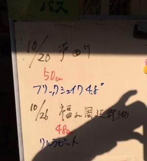 hideup 重行知明 ブログ写真 2013/10/29