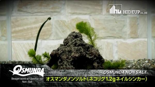 hideup 横山直人 ブログ写真 2014/03/18