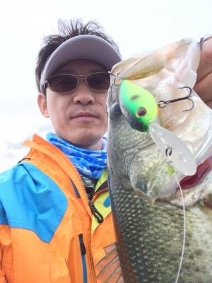 hideup 讓ェ螻ア逶エ莠コ 繝悶Ο繧ー蜀咏悄 2014/05/25
