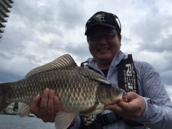 hideup 横山直人 ブログ写真 2015/05/04