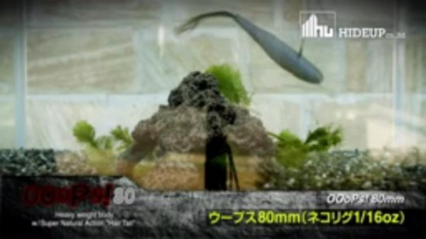 hideup 讓ェ螻ア逶エ莠コ 繝悶Ο繧ー蜀咏悄 2015/06/11