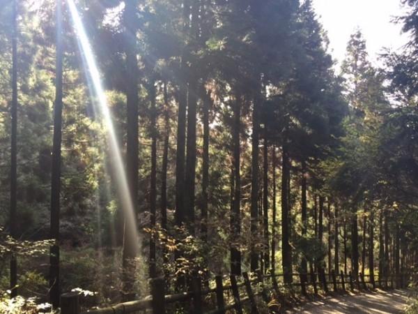 hideup 横山直人 ブログ写真 2014/11/30