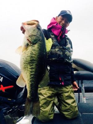 hideup 横山直人 ブログ写真 2015/03/08