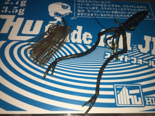 hideup 讓ェ螻ア逶エ莠コ 繝悶Ο繧ー蜀咏悄 2016/03/09